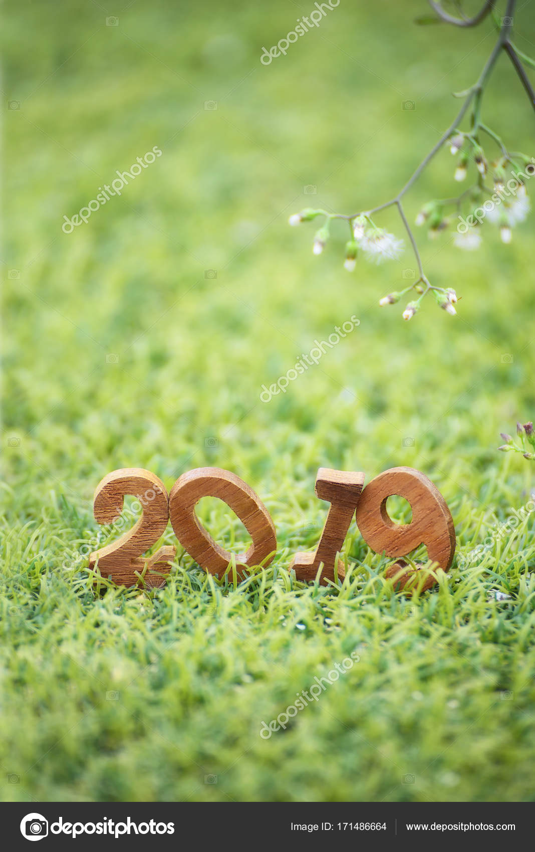 happy new year 2019 nature concept stock photo