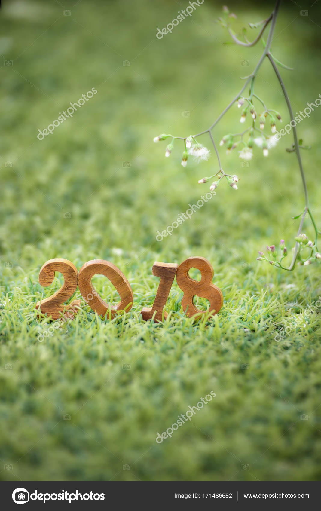 Happy New Year Nature 40