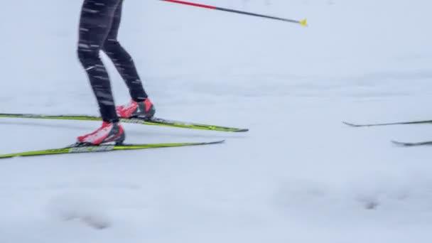 Ein paar Leute üben sich gerade im Langlauf. der Schnee fällt.