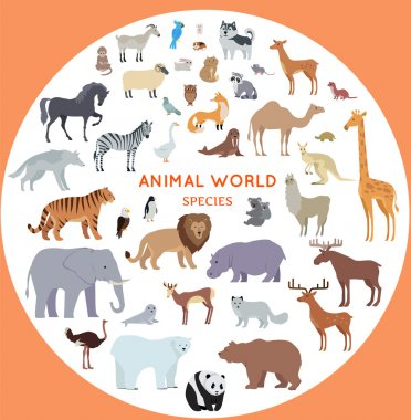 Set of World Animal Species Vector Illustrations.