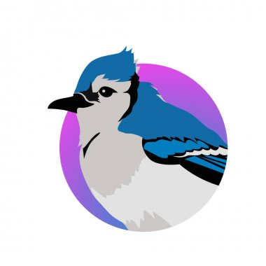 Blue Jay Flat Design Vector Illustration