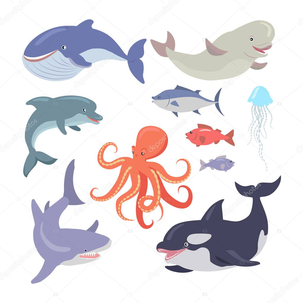 Whale, Shark, Octopus, Seals, Jellyfish, Salmon