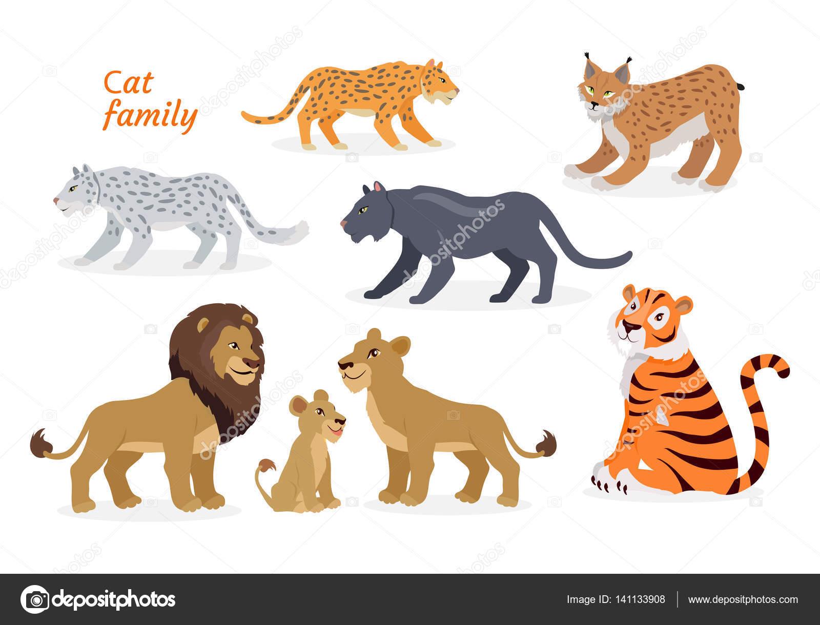 猫の家族。ネコ科。ヒョウ亜科虎...