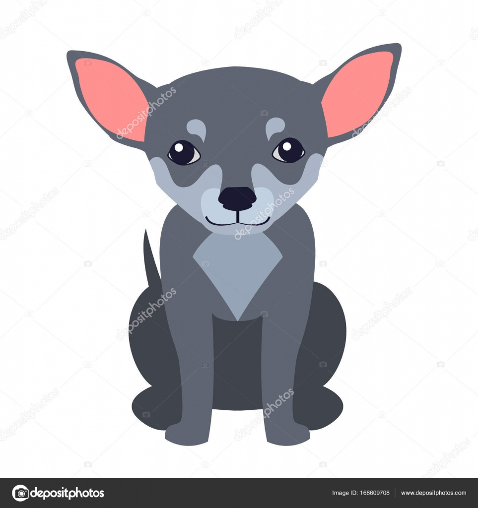 Vector Cartoon Chihuahua Lindo Chihuahua Perro Historieta Plana