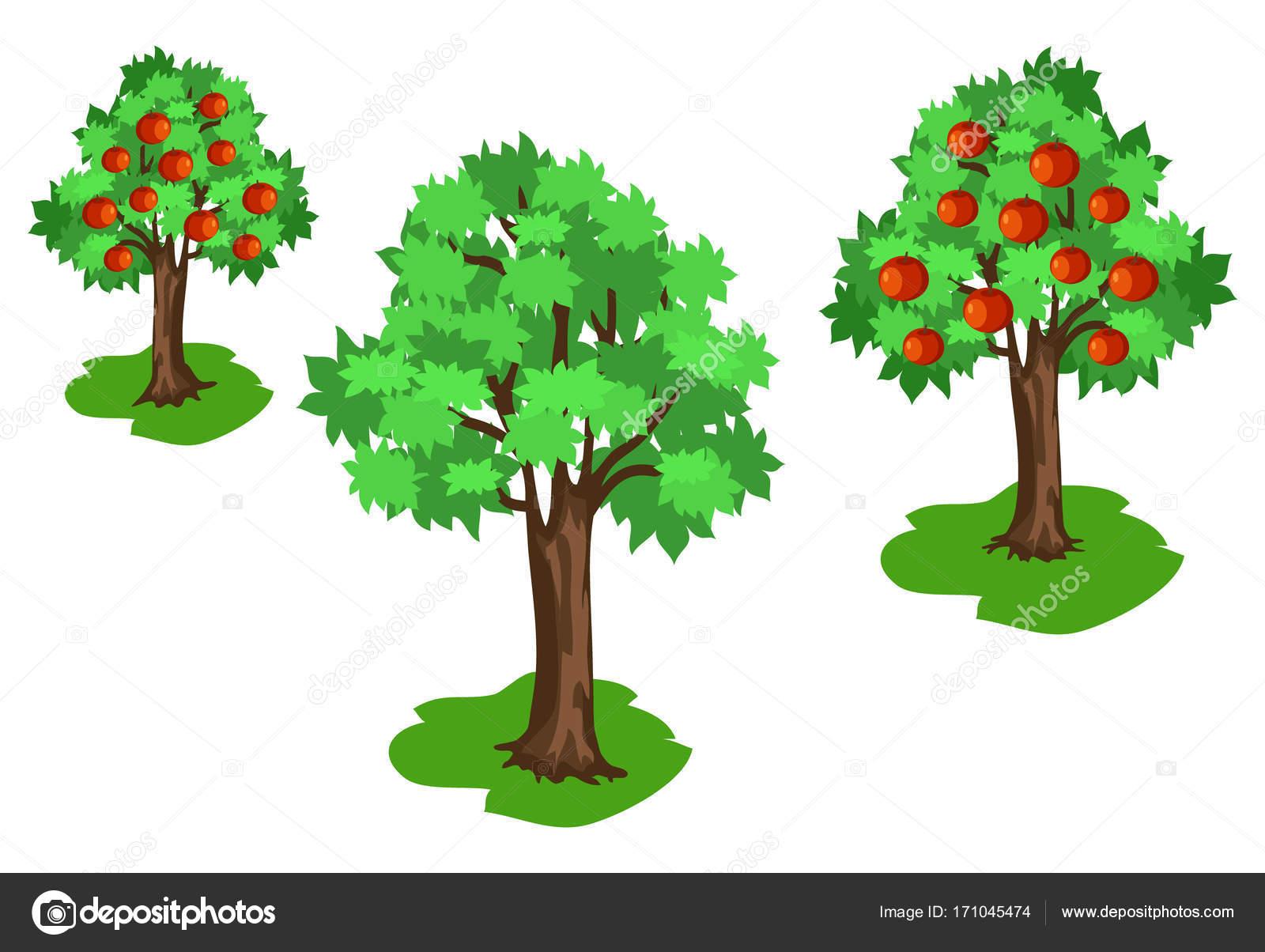 Rbol con hojas verdes y frutos rojos vector de stock for Arbol de frutos rojos pequenos
