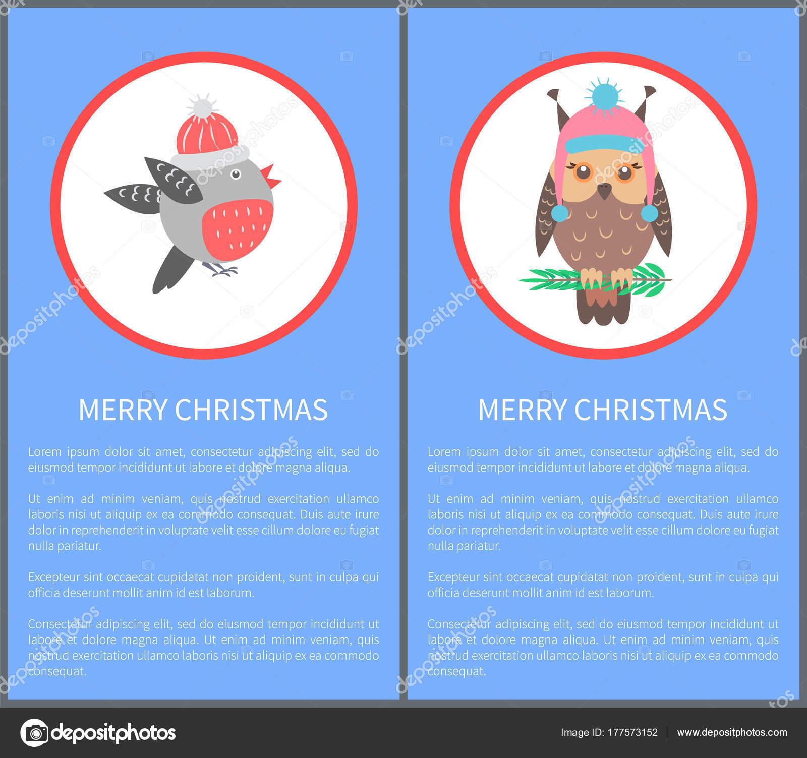 Buon Natale Anni 60.Buon Natale Anni 60 O 70 Uccelli Cartolina