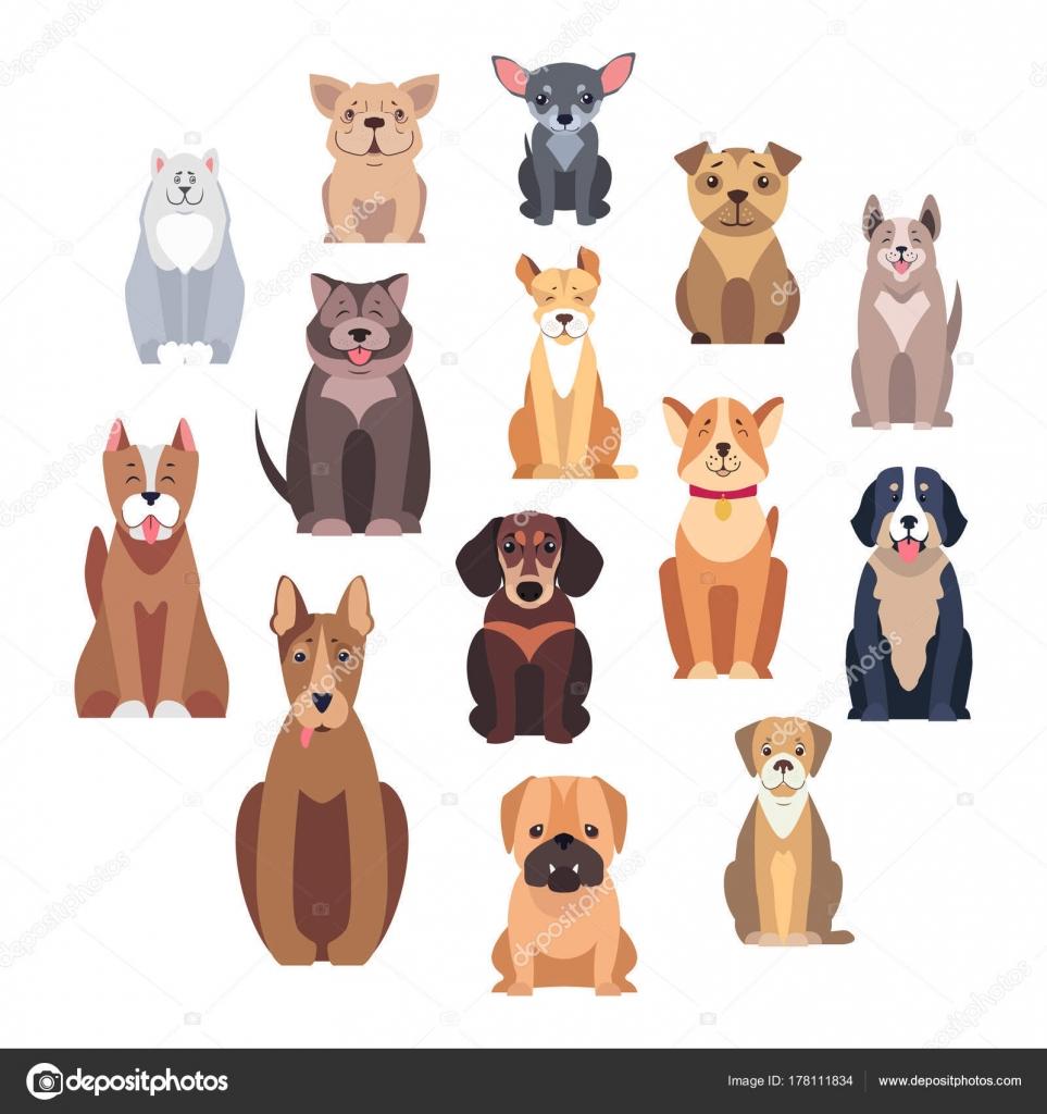 Perro De Dibujos Animados Conjunto De Ilustraciones Aisladas De