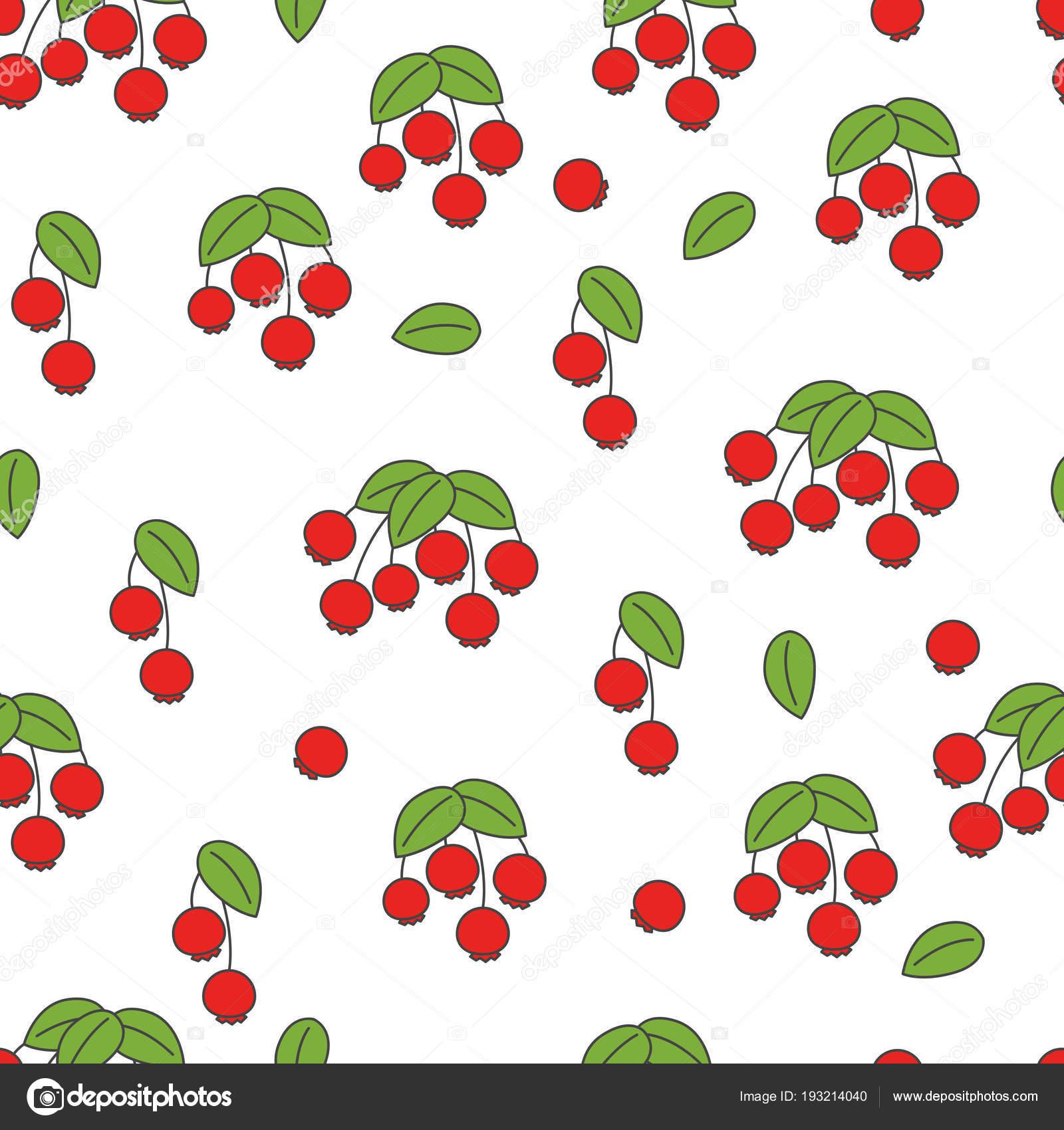 Rosa mosqueta Vector plano de patrones sin fisuras en blanco ...