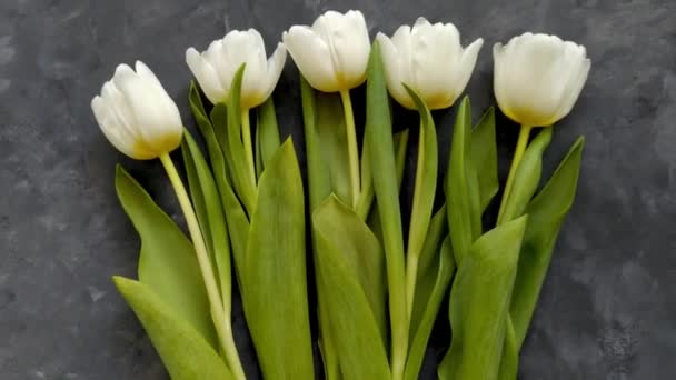 White tulip flowers on dark grey background flat lay 4K video top view. Happy Birthday Mom, 8 March Women, Mothers Day concept. Surprise gift spring flower bouquet present, female blog. Love romance