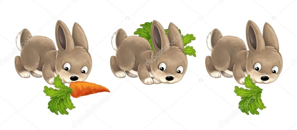 Dibujos Animados Conejo Feliz