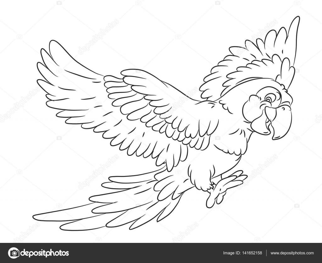 Gelukkig Lachend Cartoon Papegaai Kleurplaat Pagina Stockvector