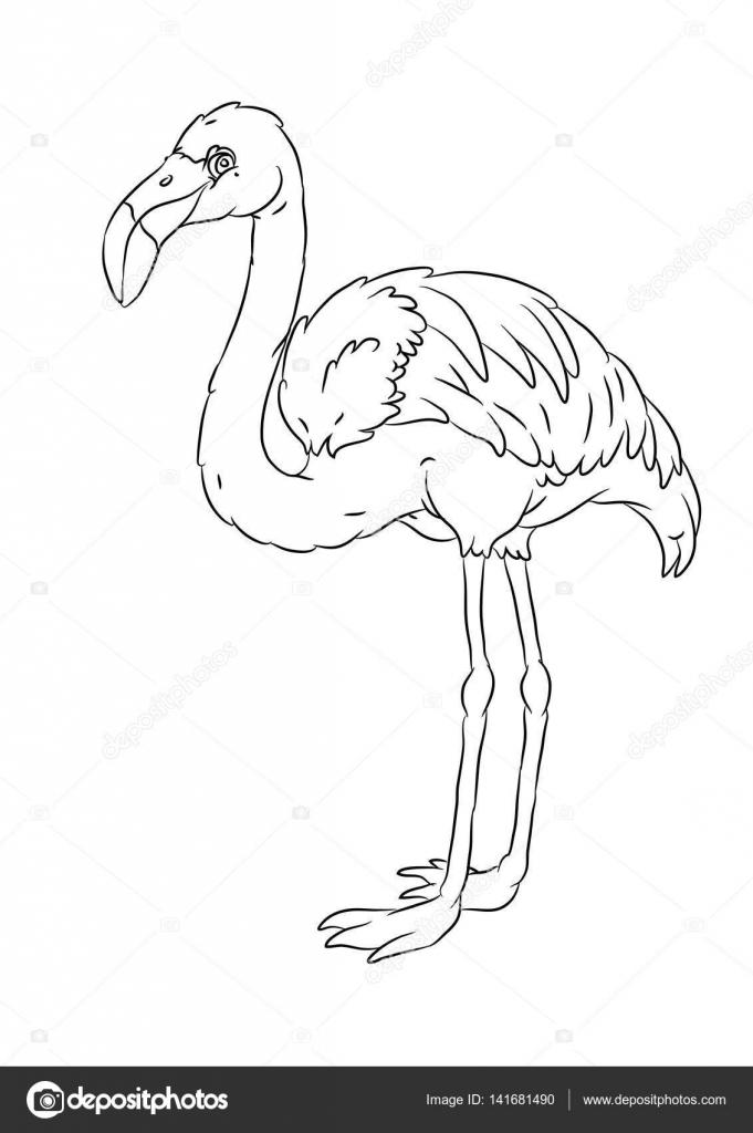 Happy Smiling Cartoon Standing Flamingo Coloring Page Stock Vector