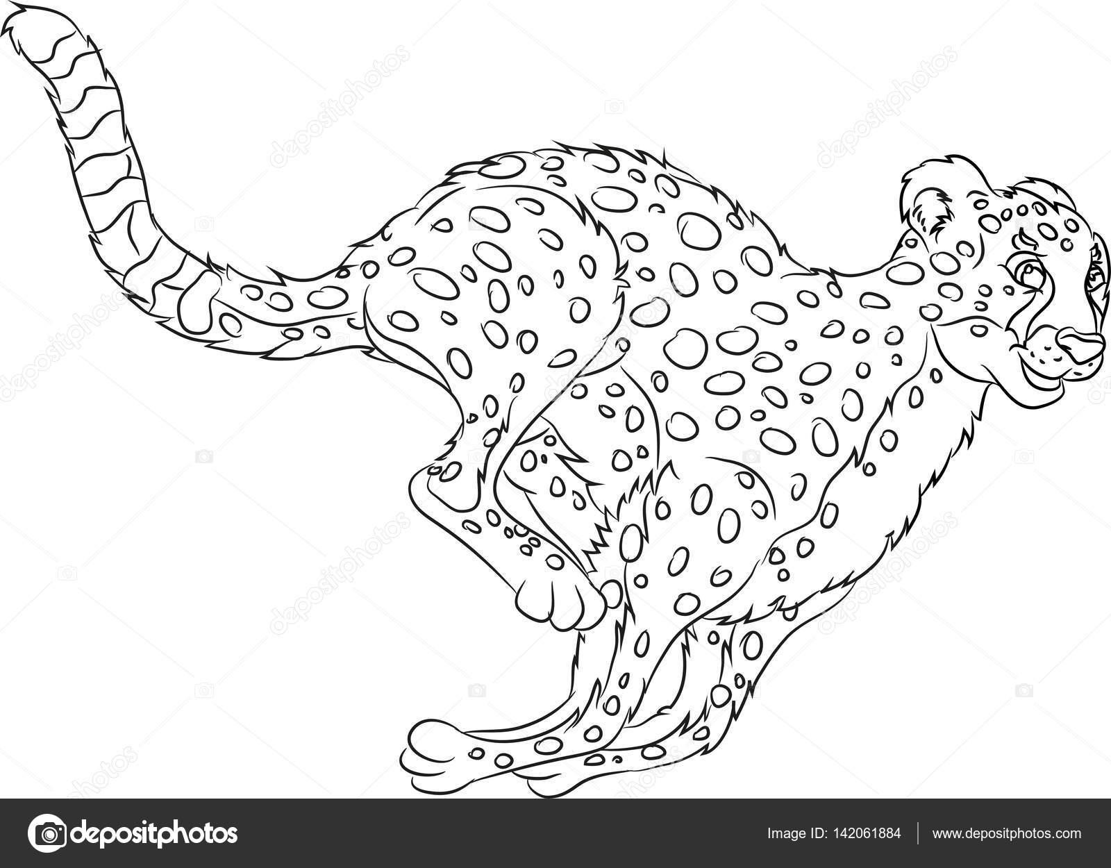 corriendo salvaje gato página para colorear — Vector de stock ...