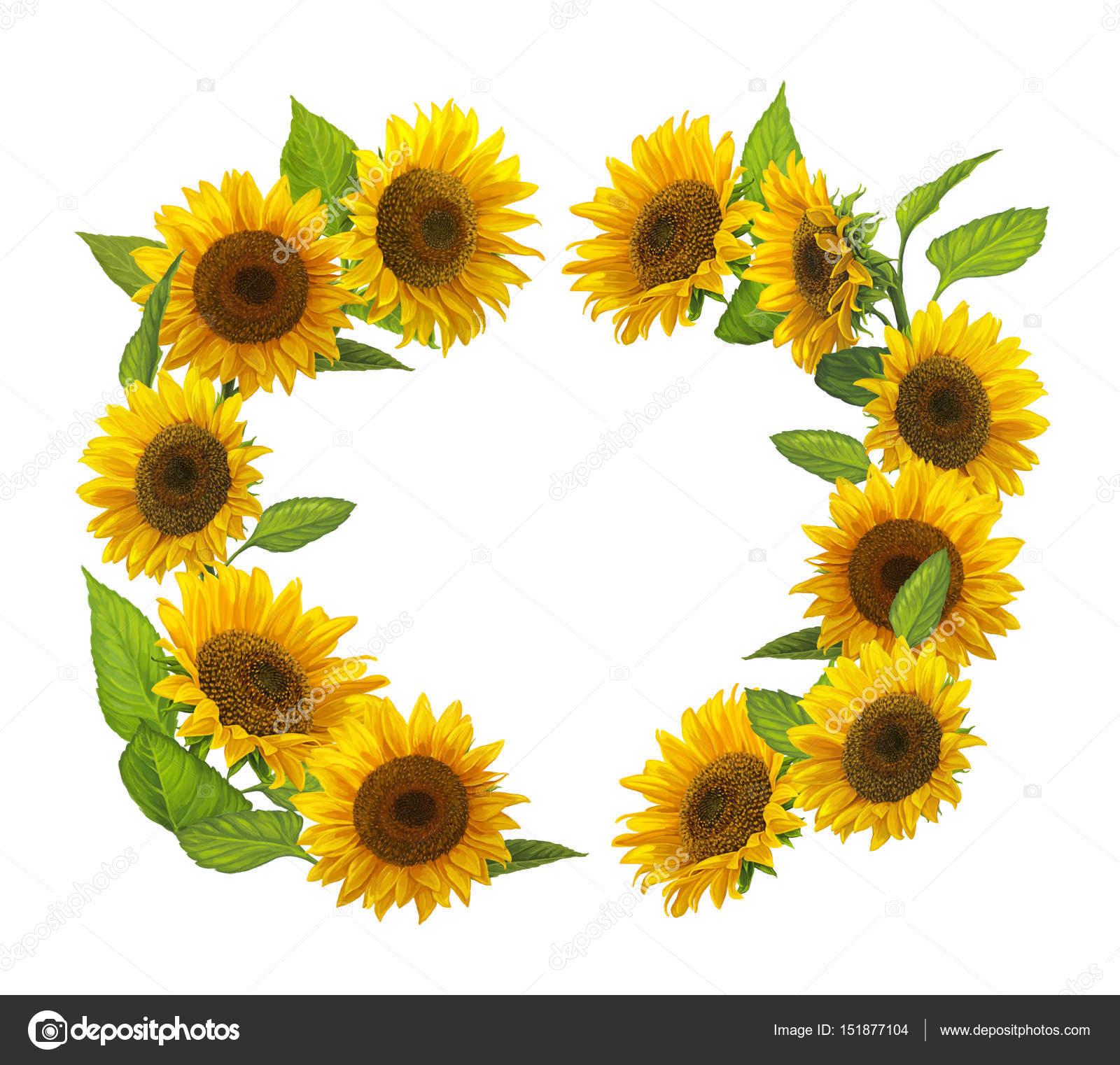 cartoon frame with sunflowers — Stock Photo © agaes8080 #151877104