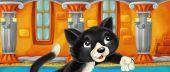 Photo Cartoon black cat