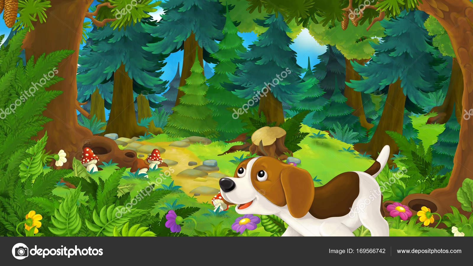 Картинка собаки в лесу для детей
