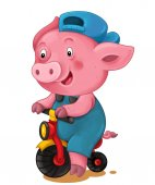 Photo Cartoon young pig riding bicycle isolated on white background