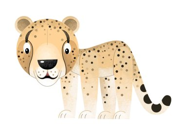 cartoon scene with cheetah on white background - illustration for children