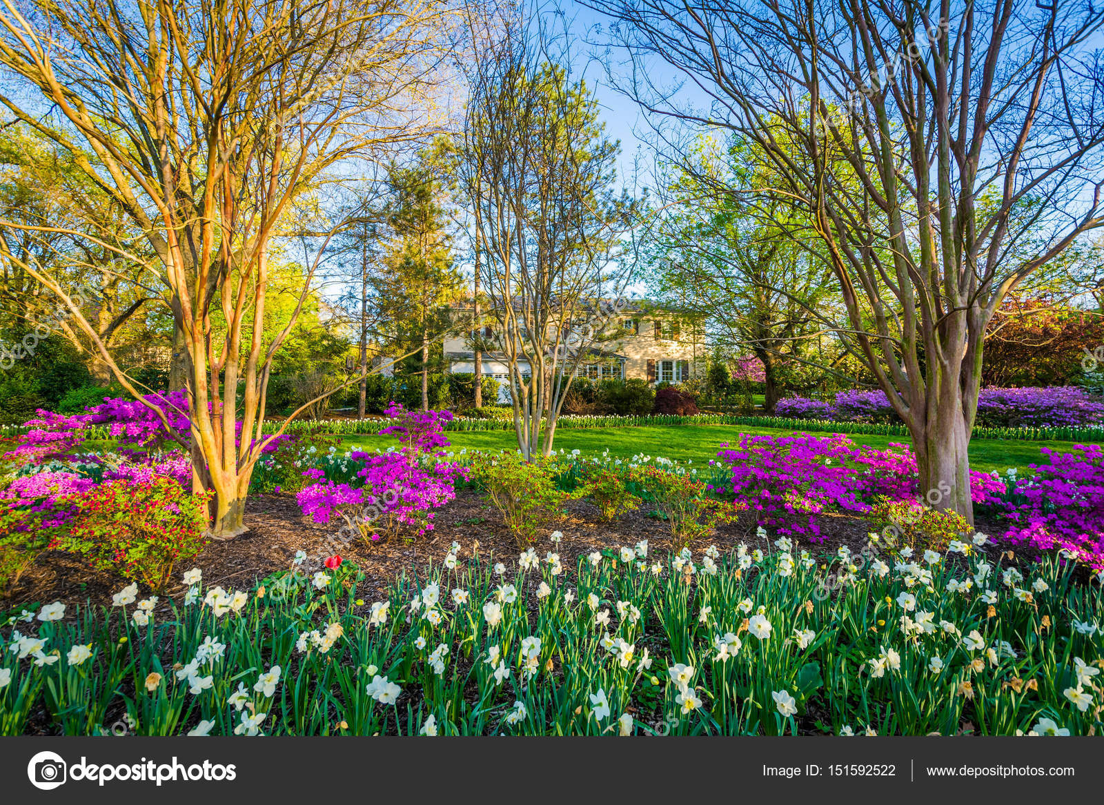 Colorful flowers and trees at Sherwood Gardens Park in Guilford ...