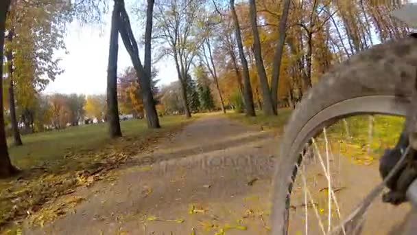 Point of view camera filming. Cyclist ride on a autumn leaves in a Central park.