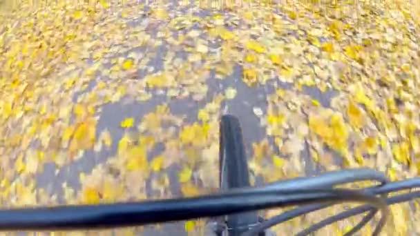 Kamerafahrten. Fahrradtour auf Herbstlaub im Central Park.