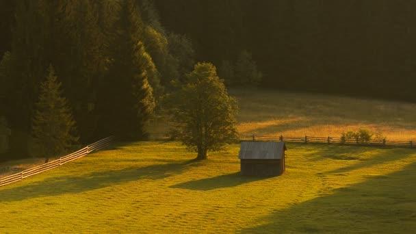 Zelené údolí s strom a struktury. Časová prodleva
