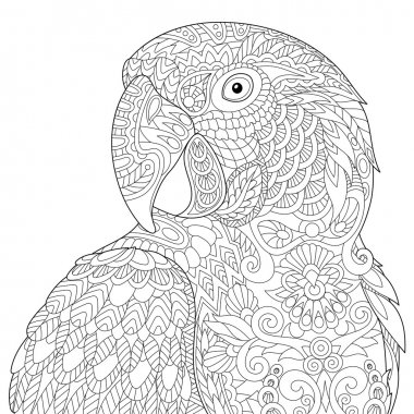 Zentangle stylized macaw