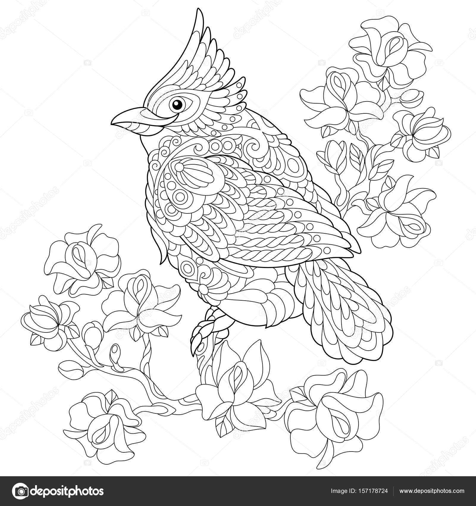 Zentangle estilizado pájaro cardenal — Archivo Imágenes Vectoriales ...