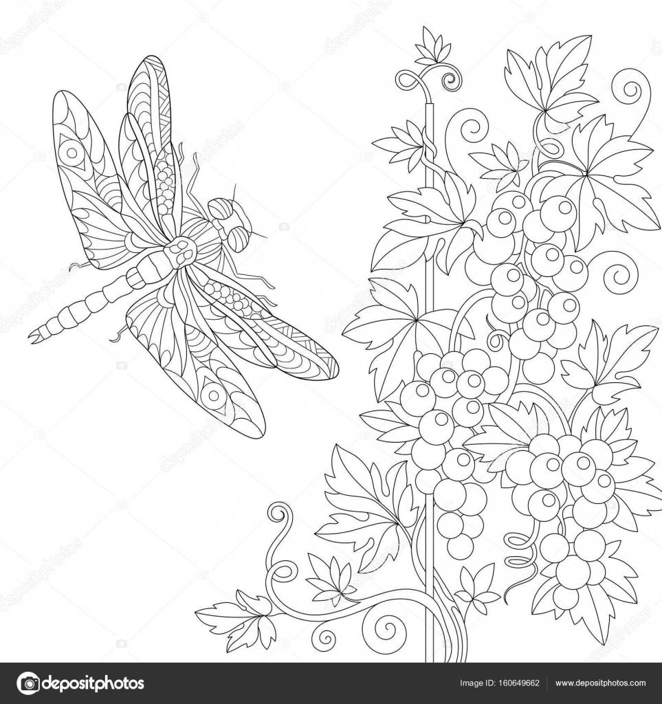 Zentangle estilizada libélula y vid — Vector de stock © Sybirko ...