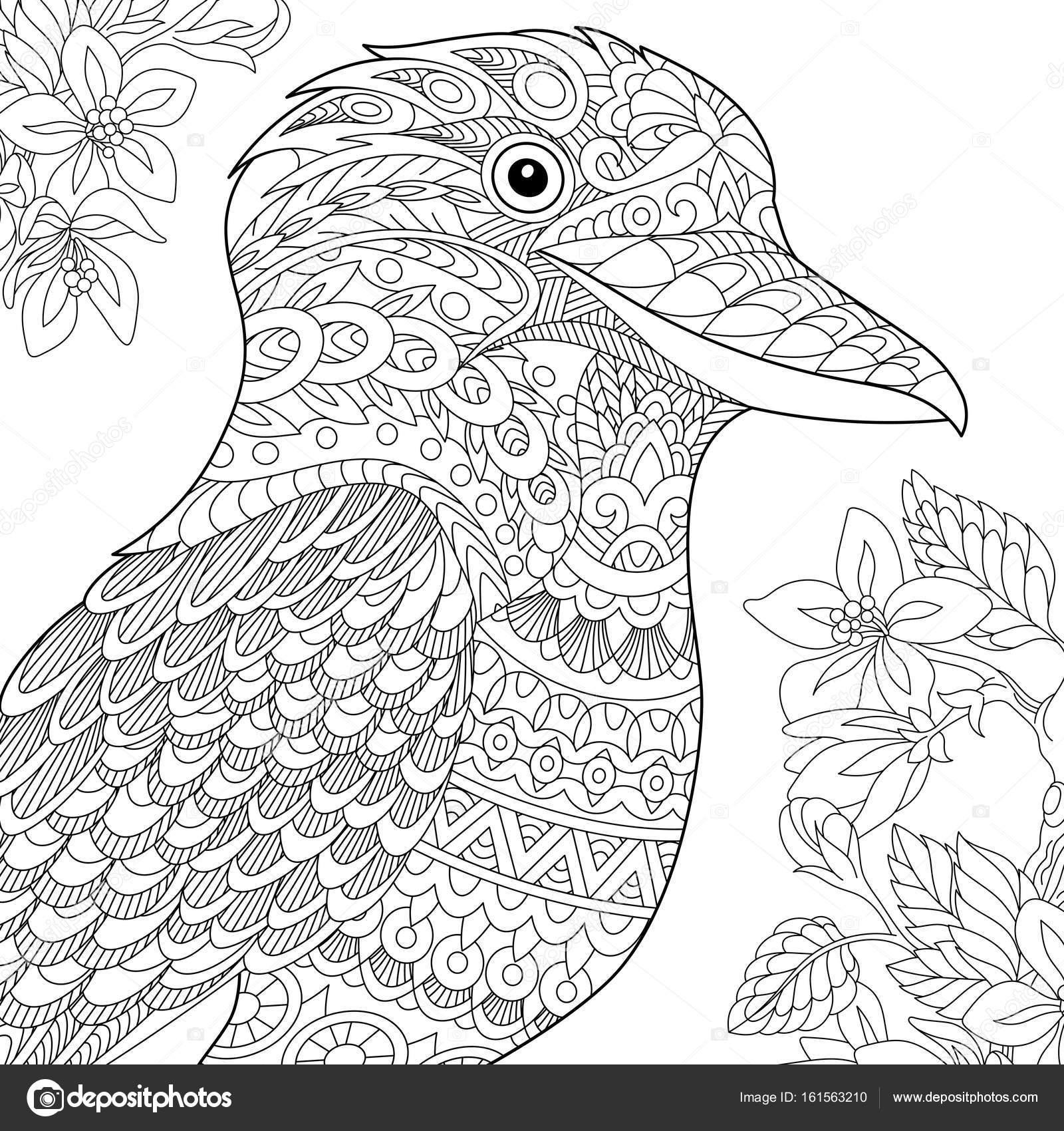 Imágenes Guacamayas Para Imprimir Y Colorear Zentangle Estilizado