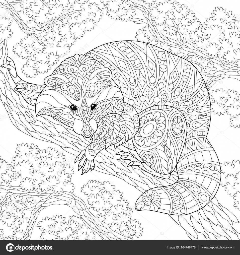 Zentangle животное стилизованные енот — Векторное ...