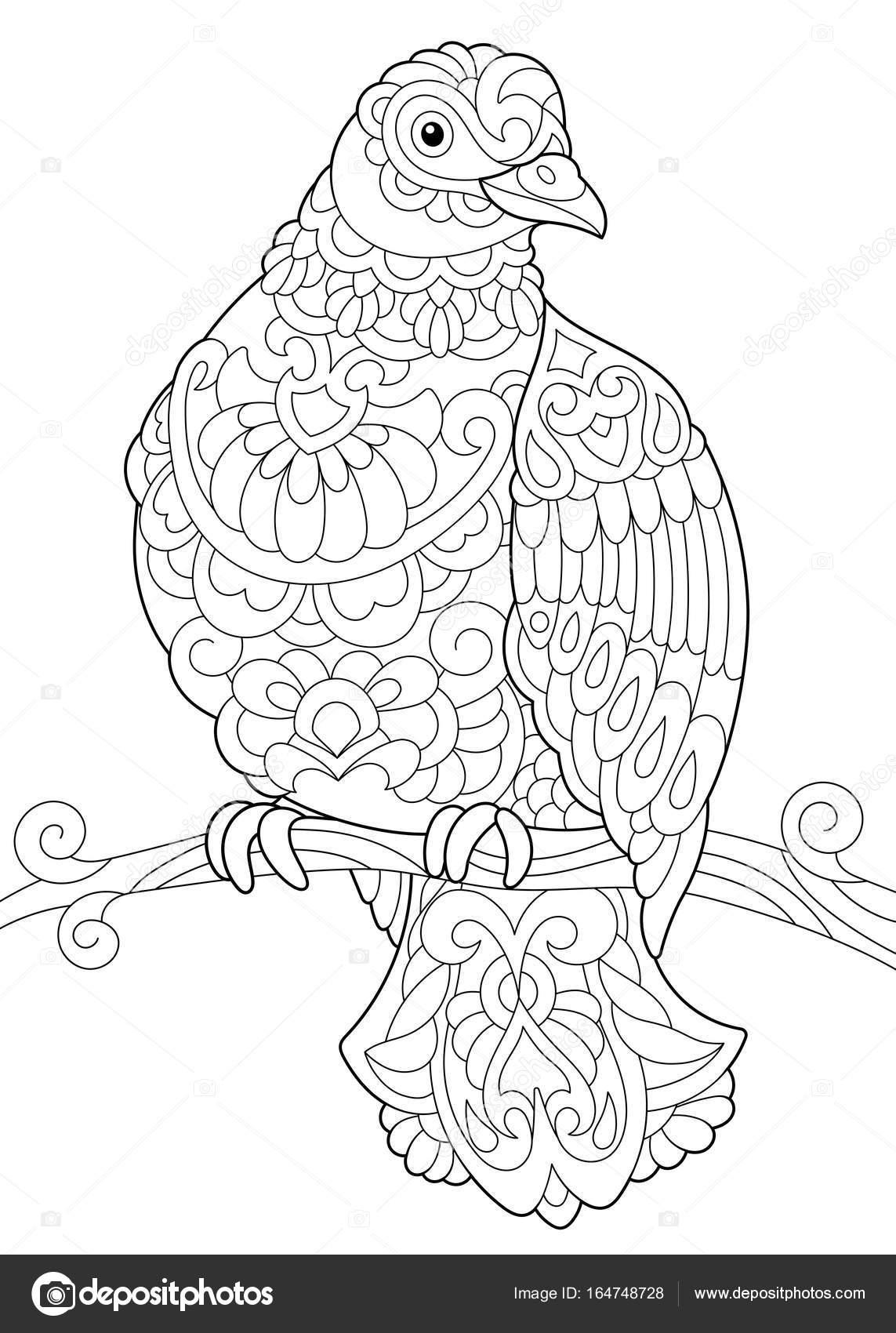 malvorlage vogel auf ast  malvorlagen