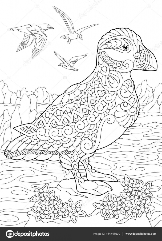 Coloring Page Of Puffin A Hole Nesting Auk Seabird Northern And Arctic Waters Freehand Sketch Drawing For Adult Antistress Book In Zentangle