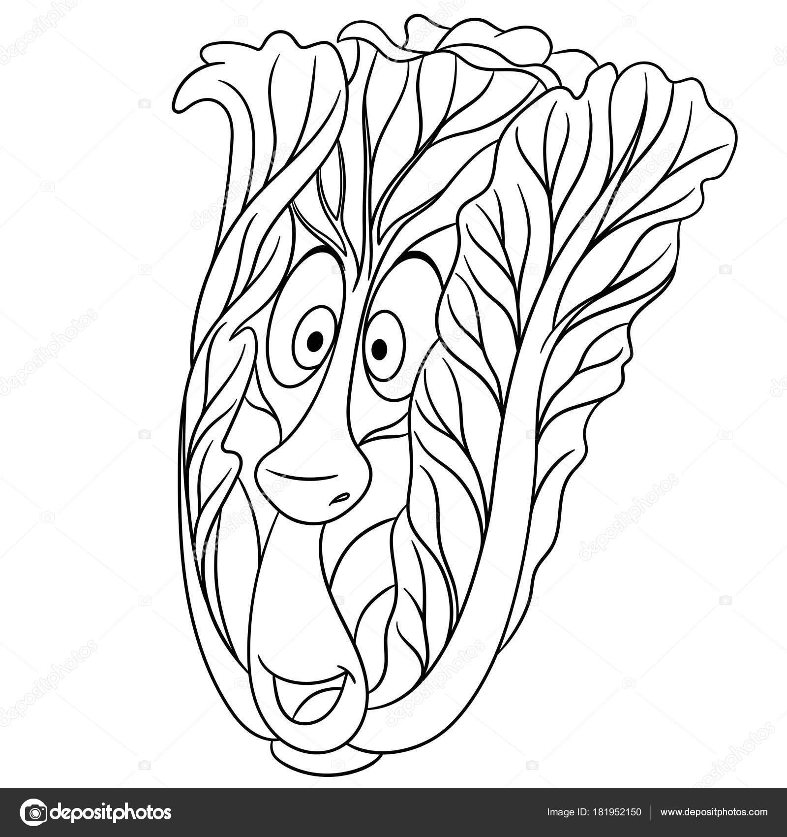 Boyama Sayfası Karikatür çin Lahanası Mutlu Sebze Karakter Eco Gıda