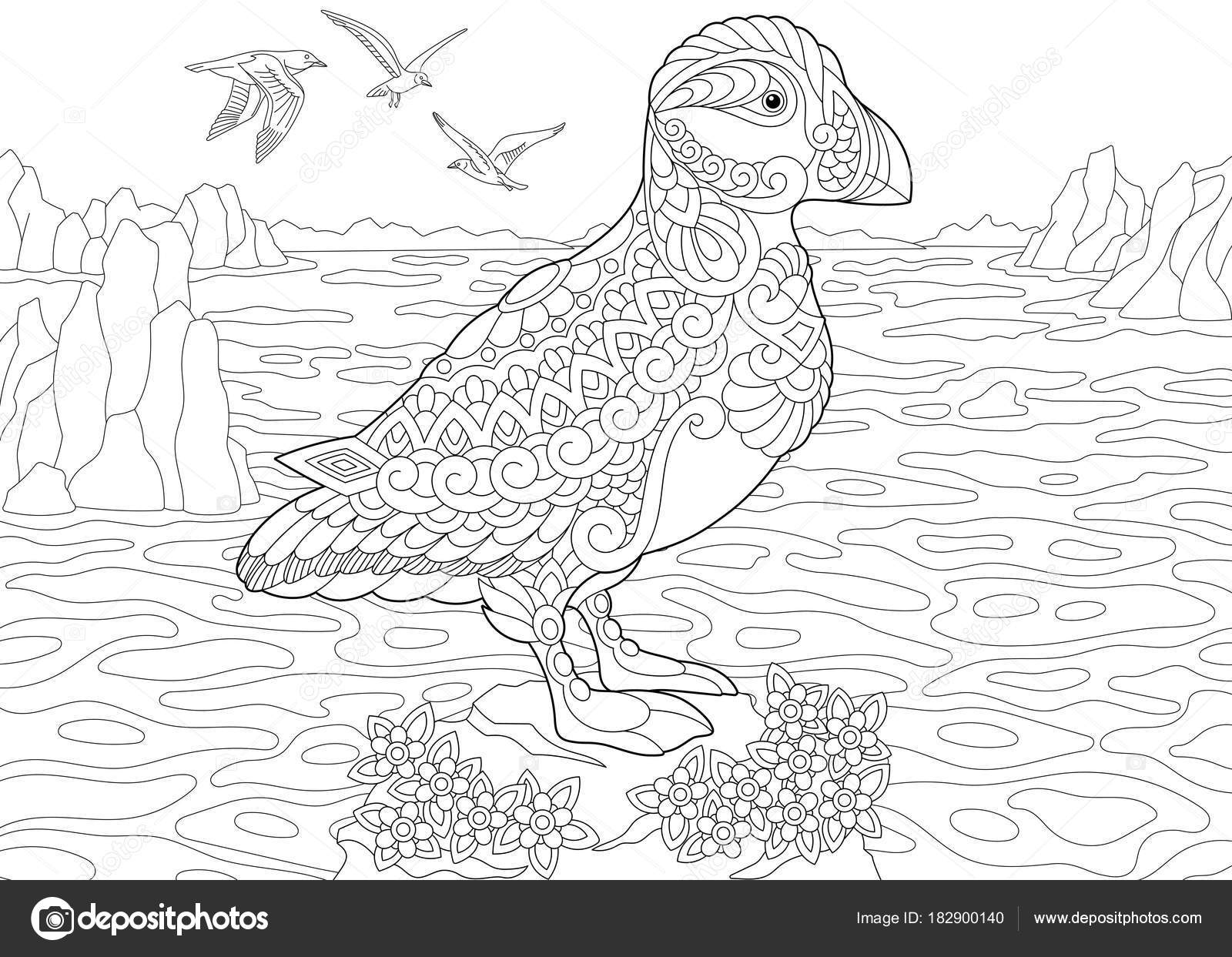 Coloring Page Adult Book Puffin A Hole Nesting Auk Seabird Of Northern And Arctic Waters Antistress Freehand Sketch Drawing With Doodle