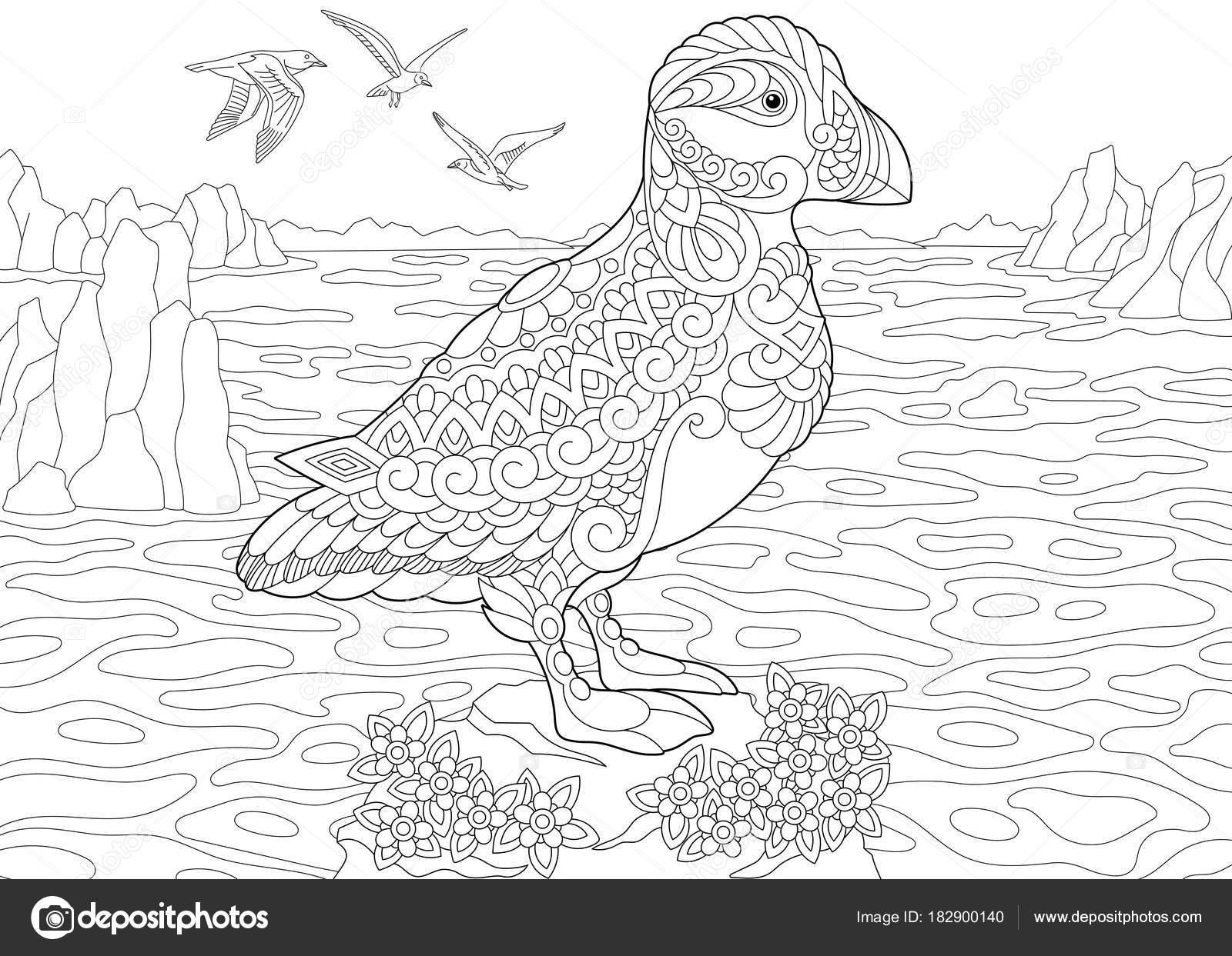 Zentangle puffin sea bird — Stock Vector © Sybirko #182900140