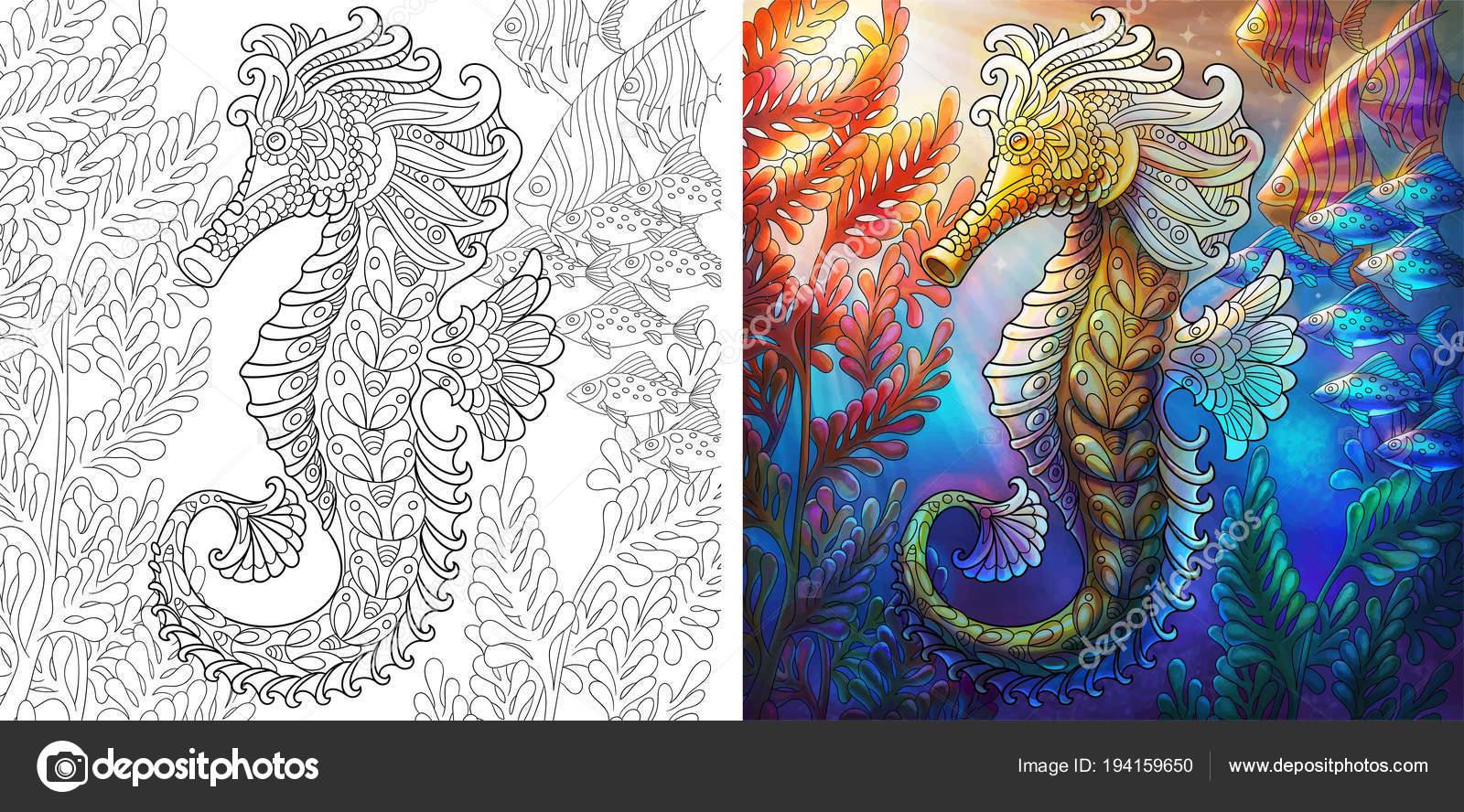 Seahorse Coloring Book Page Vector Image By C Sybirko Vector Stock 194159650