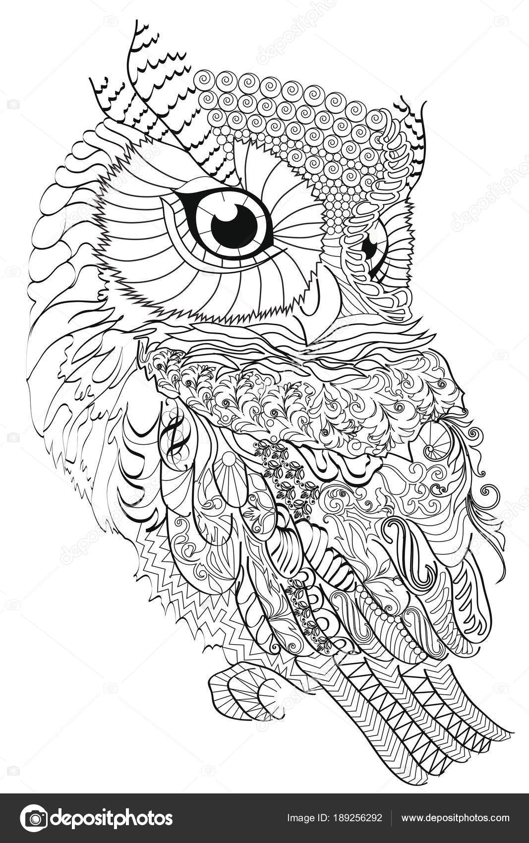 Color Therapy: An Anti-Stress Coloring Book . Owl. — Stock Vector ...