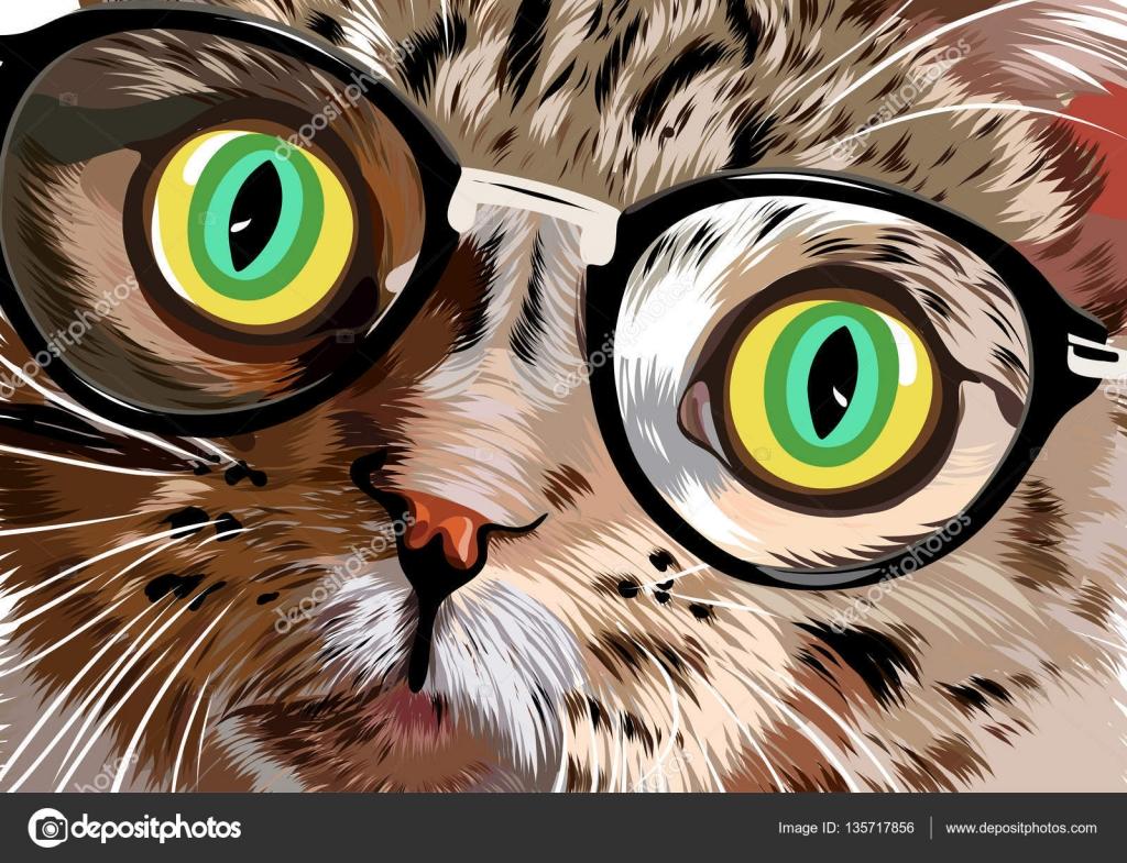 Обои коты, картинки котов, фото, скачать обои кошки для рабочего стола.