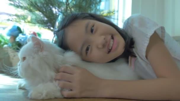 4k: szép ázsiai lány játszik vele Perzsa macska