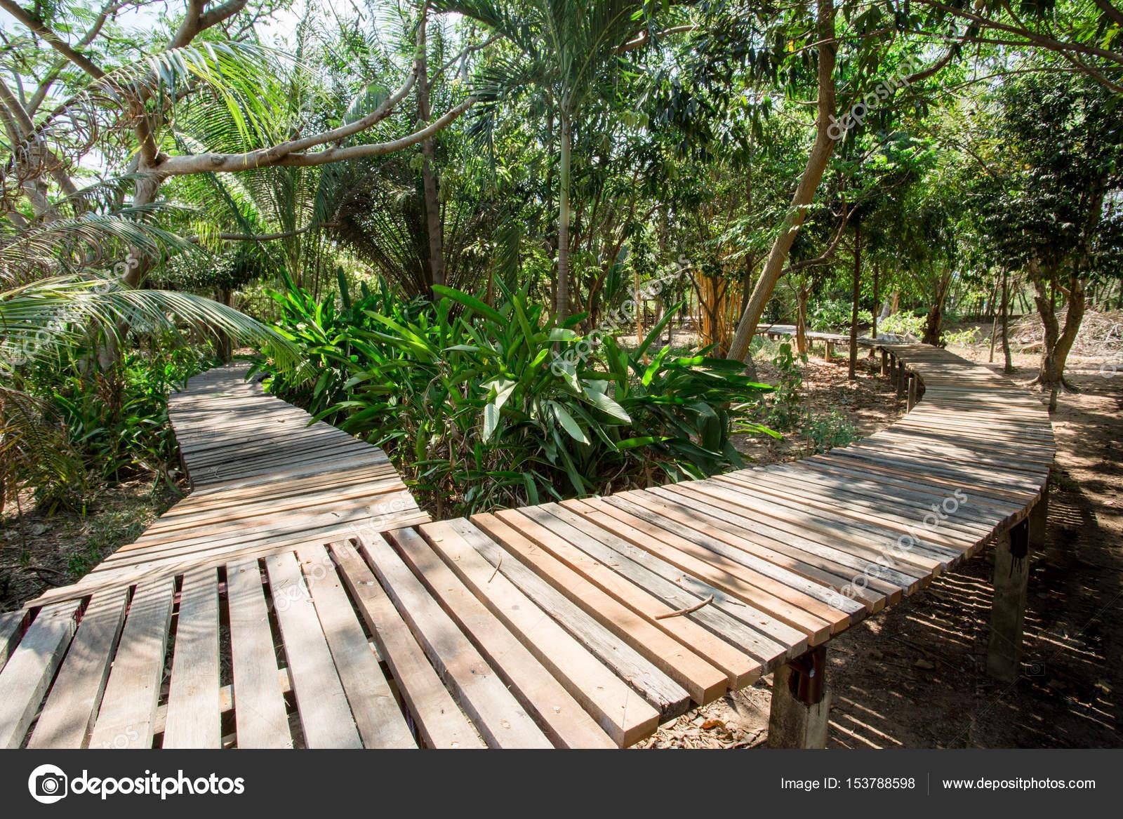 Holz Brücke Im Garten Stockfoto Sirikornt 153788598