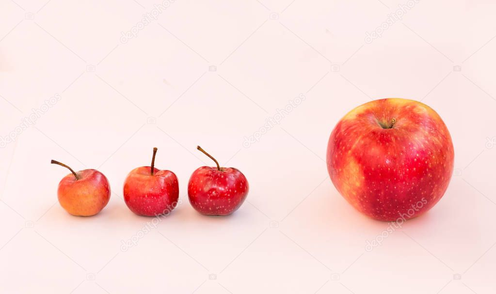 A large apple and behind it are 3 small paradise apples. The boss is ahead of him subordinates. Team of business employees.