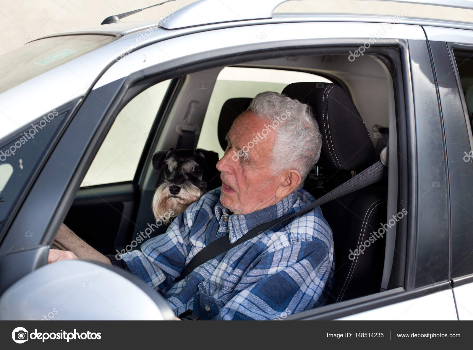 Old man with dog in car — Stock Photo © budabar #148514235