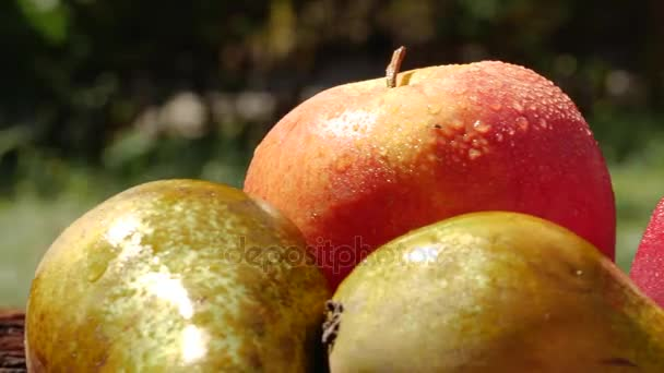 Close up on delicious fresh fruits on wooden table. Apple. Pear.