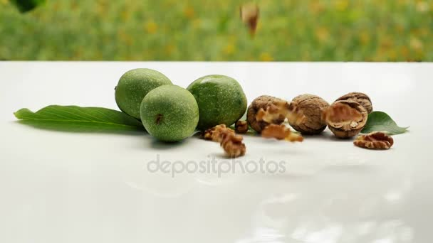 Fresh tasty Wallnuts falling on white surface outdoors. Ripe and fresh nut fruit. Organic natural healthy food.