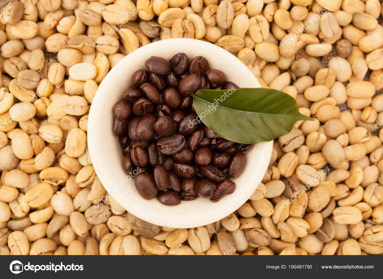 Unroasted Coffee Beans >> Roasted And Unroasted Coffee Beans Stock Photo C Eskymaks