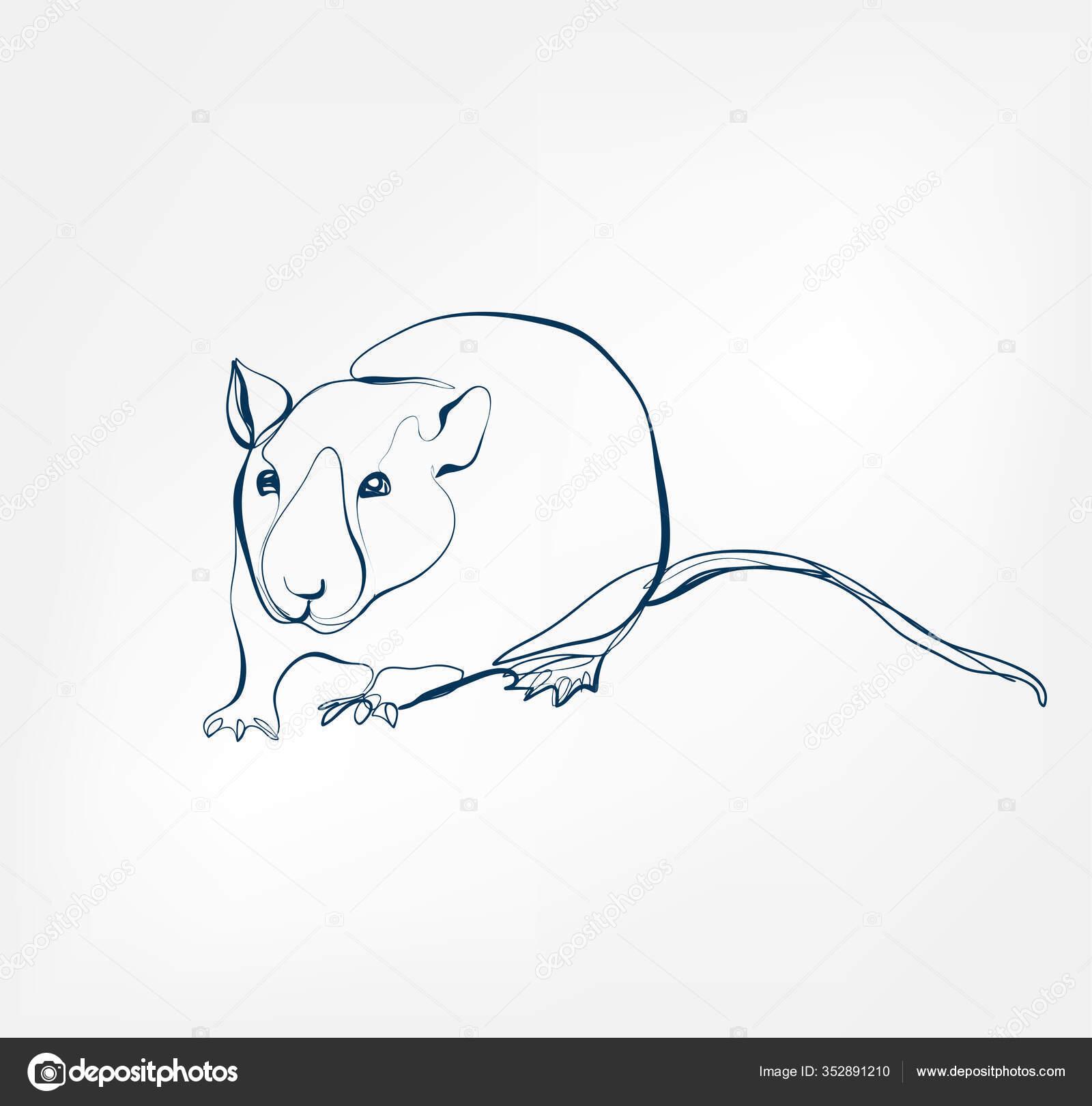 rat vector animal wild one line stock vector c ivona17 mail ru 352891210 depositphotos