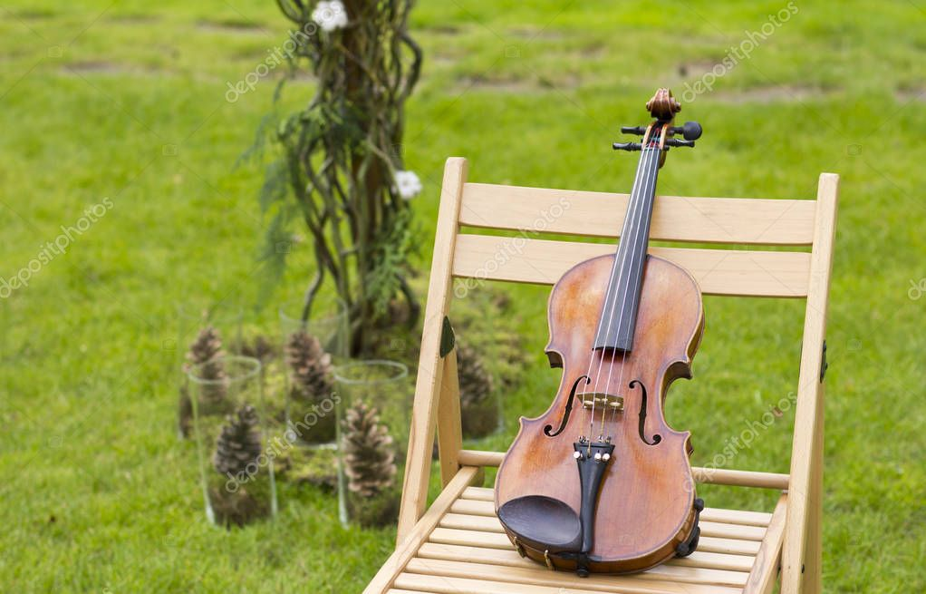 Violin on a background of a wedding arch. Violin at the wedding. Live music. Violin