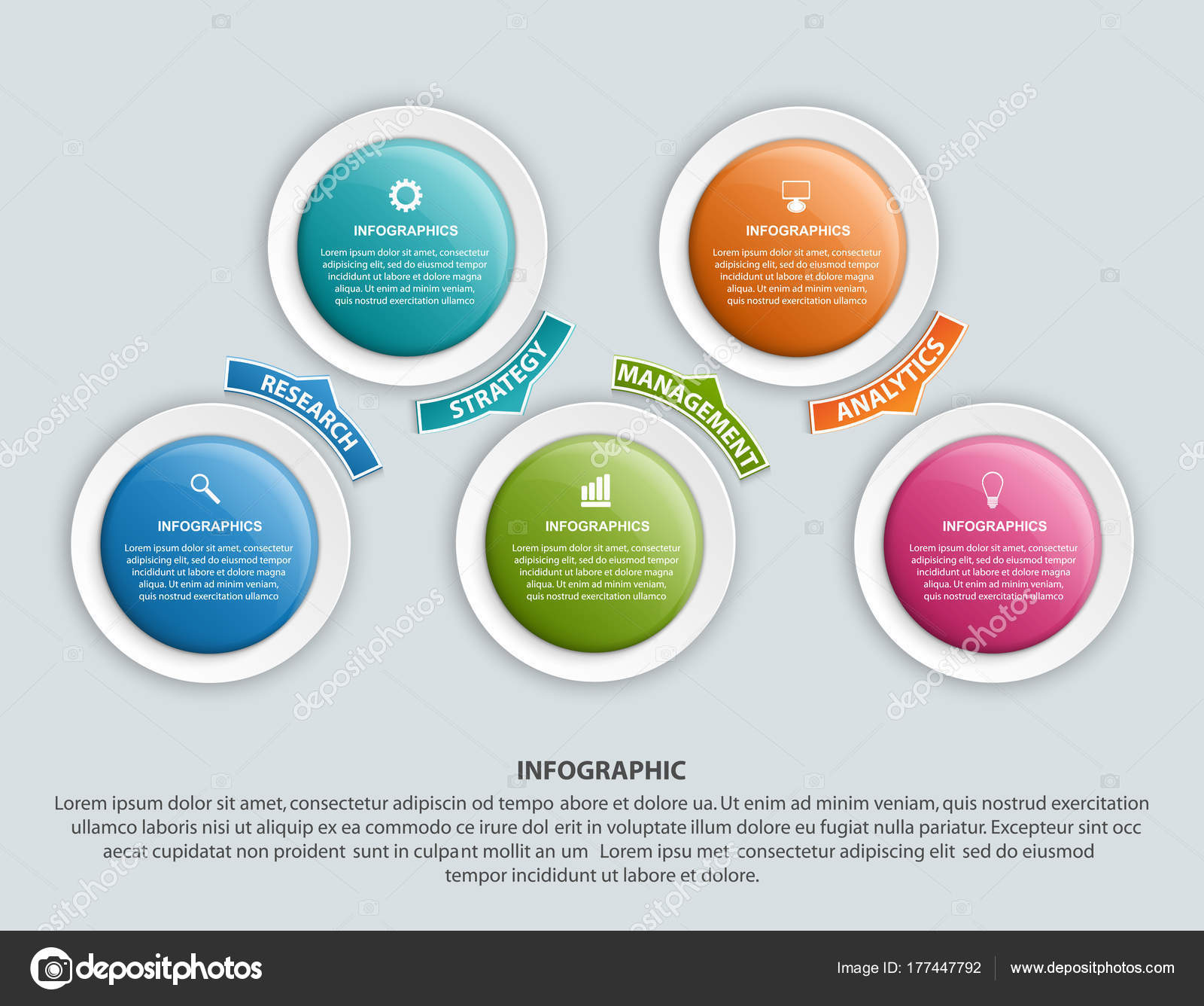 Infographic design organization chart template for business