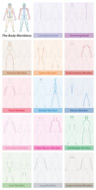 Body Meridians Names TCM